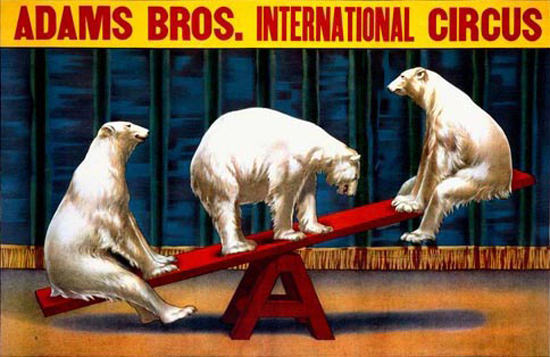 Adams Bros International Circus Ice Bears | Vintage Ad and Cover Art 1891-1970