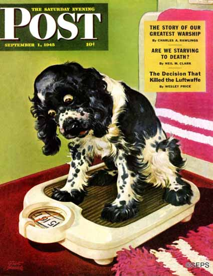 Albert Staehle Butch the Cocker Saturday Evening Post 1945_09_01 | The Saturday Evening Post Graphic Art Covers 1931-1969