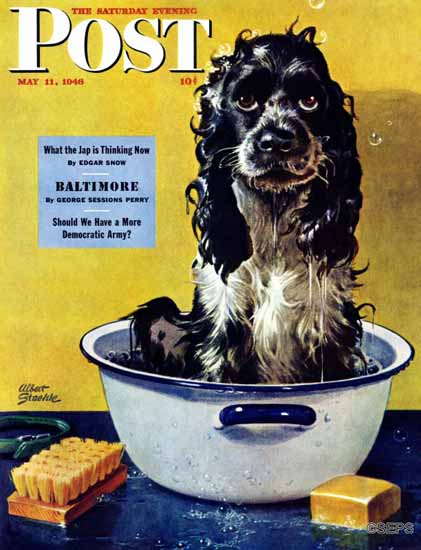 Albert Staehle Butch the Cocker Saturday Evening Post 1946_05_11 | The Saturday Evening Post Graphic Art Covers 1931-1969