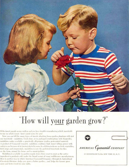 American Cyanamid Co Your Garden Grows 1955   Vintage Ad and Cover Art 1891-1970