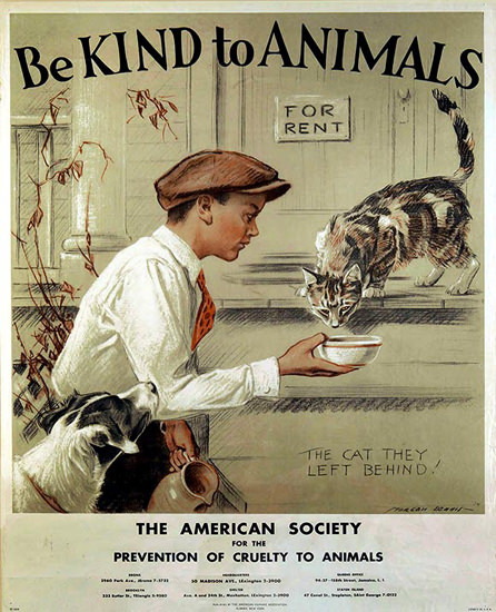 American Society Prevention Cruelty To Animals | Vintage Ad and Cover Art 1891-1970