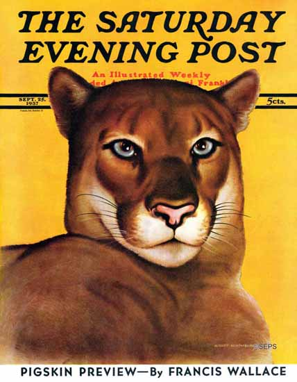 August Schombrug Saturday Evening Post Mountain Lion 1937_09_25 | The Saturday Evening Post Graphic Art Covers 1931-1969
