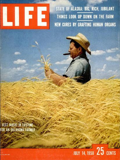 Best Wheat for Oklahoma Farmer 14 Jul 1958 Copyright Life Magazine | Life Magazine Color Photo Covers 1937-1970
