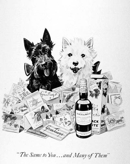 Black And White Scotch Whisky 1954 Terriers | Vintage Ad and Cover Art 1891-1970