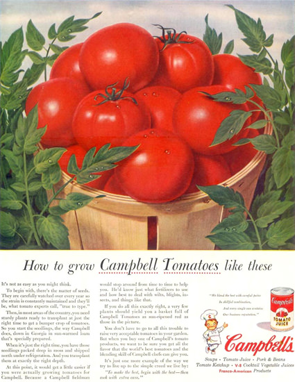 Campbells Tomato Juice Tomatoes Like 1955 | Vintage Ad and Cover Art 1891-1970