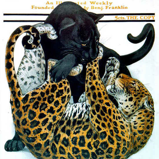 Charles Livingston Bull Saturday Evening Post 1916_11_18 Copyright crop | Best of Vintage Cover Art 1900-1970