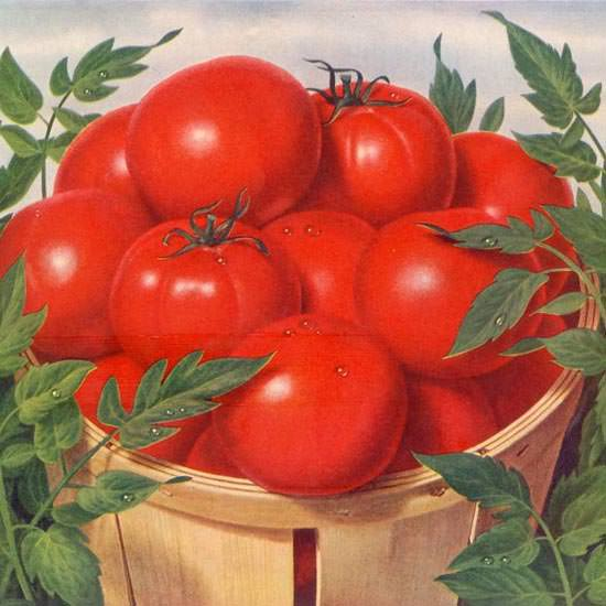 Detail Of Campbells Tomato Juice Tomatoes Like 1955 | Best of Vintage Ad Art 1891-1970