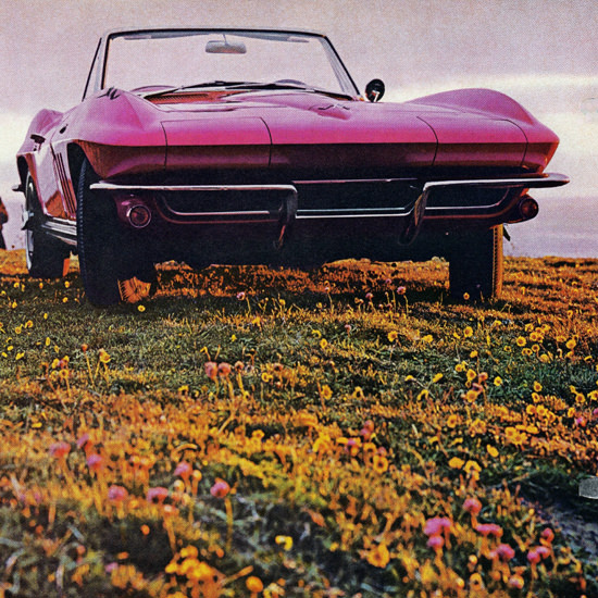 Detail Of Chevrolet Corvette Convertible 1965 Old Psyche | Best of Vintage Ad Art 1891-1970