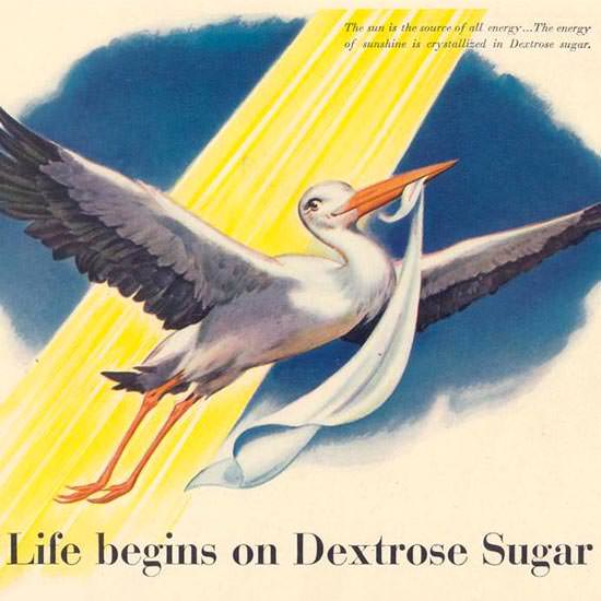 Detail Of Dextrose Sugar Stork 1942 | Best of 1940s Ad and Cover Art