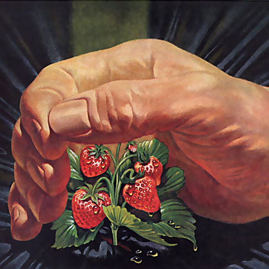 Detail Of Union Carbide Strawberries | Best of Vintage Ad Art 1891-1970
