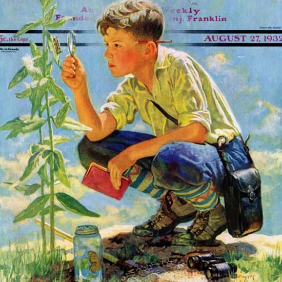 Eugene Iverd Saturday Evening Post Botanist 1932_08_27 Copyright crop | Best of Vintage Cover Art 1900-1970