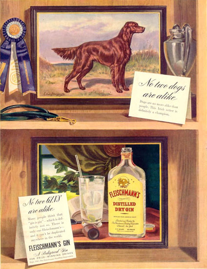 Fleischmanns Dry Gin Irish Setter 1941 | Vintage Ad and Cover Art 1891-1970