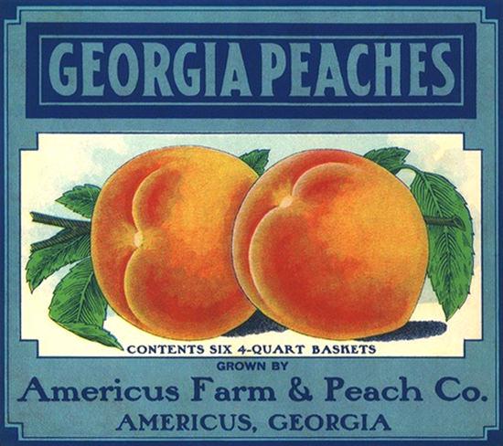 Georgia Peaches Americus Farm Georgia | Vintage Ad and Cover Art 1891-1970