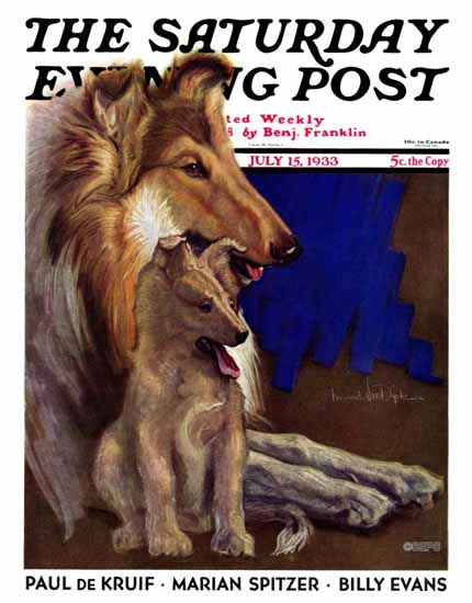 Howard Van Dyck Saturday Evening Post Cover 1933_07_15 | The Saturday Evening Post Graphic Art Covers 1931-1969