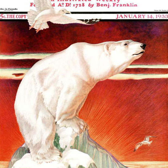 Jack Murray Saturday Evening Post Polar Bear 1933_01_14 Copyright crop | Best of 1930s Ad and Cover Art