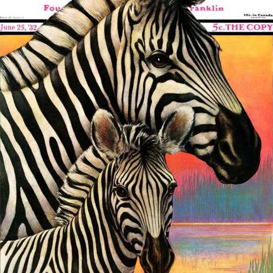 Jack Murray Saturday Evening Post Zebras 1932_06_25 Copyright crop | Best of 1930s Ad and Cover Art