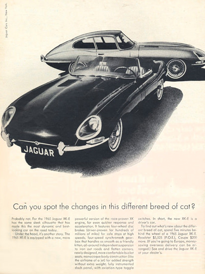 Jaguar 1965 XKE And  E-Type Spot The Changes | Vintage Cars 1891-1970