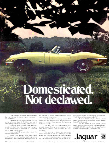 Jaguar 1970 Domesticated Not Declawed | Vintage Cars 1891-1970