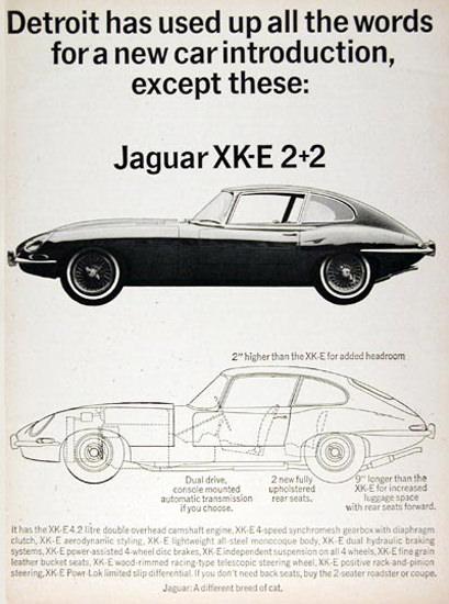 Jaguar XK-E 2-2 1966 Detroit Car Introduction | Vintage Cars 1891-1970