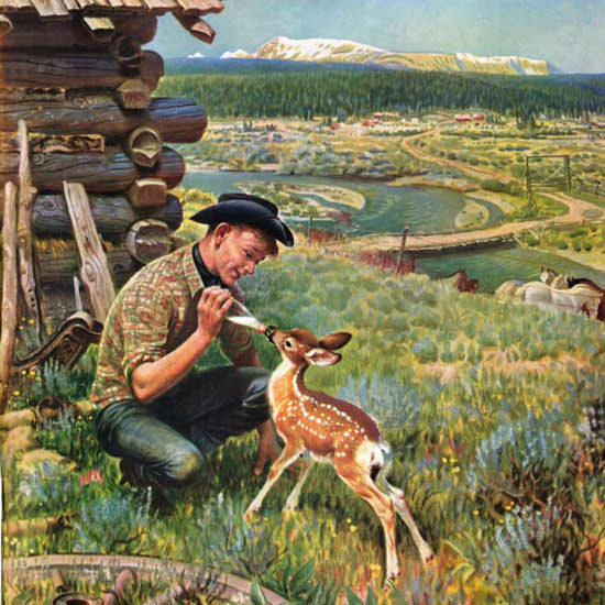 John Clymer Saturday Evening Post Fawn 1950_05_27 Copyright crop | Best of Vintage Cover Art 1900-1970