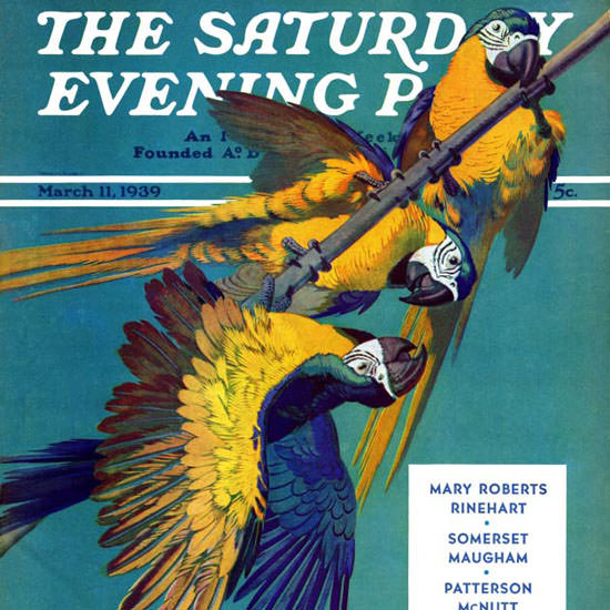 Julius Moessel Saturday Evening Post Parrots 1939_03_11 Copyright crop | Best of 1930s Ad and Cover Art