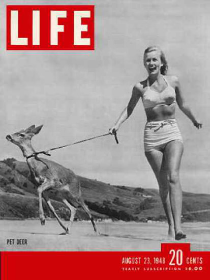 Life Magazine Copyright 1948 Young Hunter With Pet Deer | Sex Appeal Vintage Ads and Covers 1891-1970