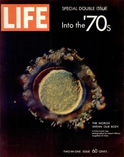 Living Human Egg by Lennart Nilsson 9 Jan 1970 Copyright Life Magazine | Life Magazine Color Photo Covers 1937-1970