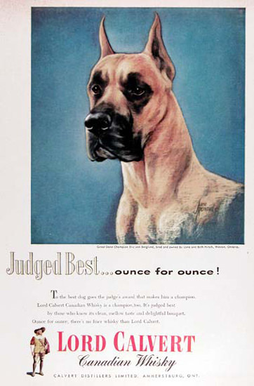 Lord Calvert Canadian Whisky 1954 Great Dane | Vintage Ad and Cover Art 1891-1970
