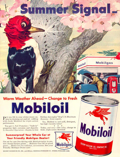 Mobiloil Summer Signal Woodpecker 1950 | Vintage Ad and Cover Art 1891-1970