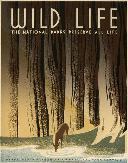 National Park Service Preserve Wild Life 1940 by Frank S Nicholson | Vintage Ad and Cover Art 1891-1970