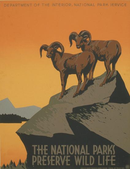 National Parks Preserve Wild Life 1939 J  Hirt   Vintage Travel Posters 1891-1970