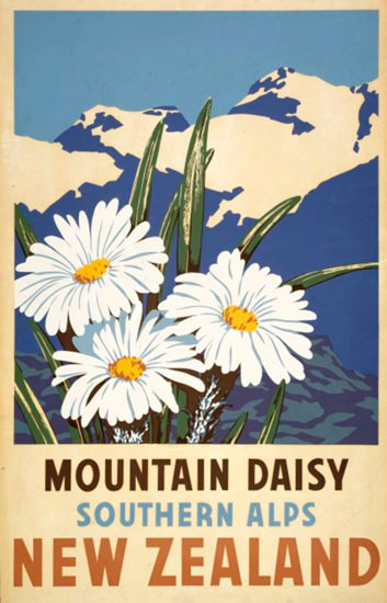 New Zealand Mountain Daisy Alps 1930s | Vintage Travel Posters 1891-1970