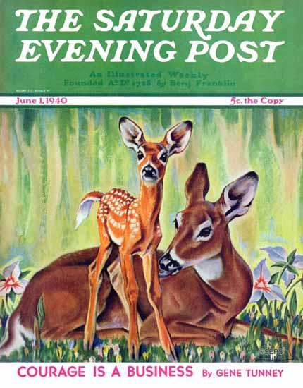 Paul Bransom Saturday Evening Post Doe and Fawn 1940_06_01   The Saturday Evening Post Graphic Art Covers 1931-1969