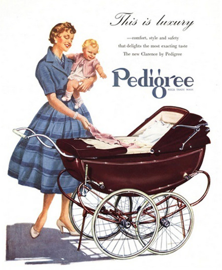 Pedigree Baby Carriage This Is Luxery | Vintage Ad and Cover Art 1891-1970