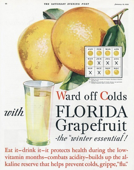 Roaring 1920s Florida Grapefruit Ward Of Colds 1929 | Roaring 1920s Ad Art and Magazine Cover Art