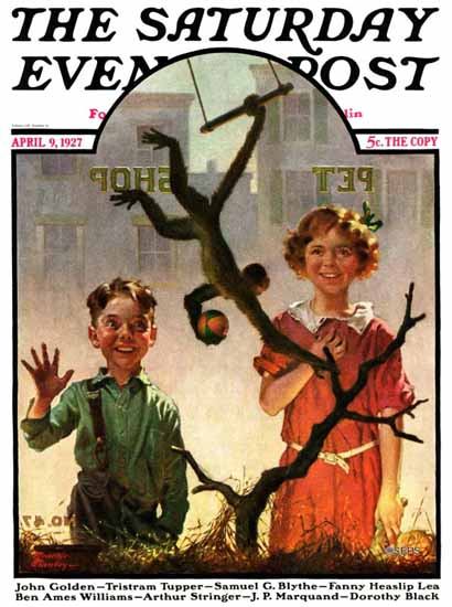 Roaring 1920s Frederic Stanley Saturday Eve Post Pet Shop 1927_04_09 | Roaring 1920s Ad Art and Magazine Cover Art