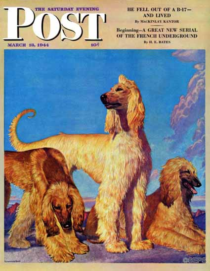 Rutherford Boyd Saturday Evening Post Afghan Hounds 1944_03_18 | The Saturday Evening Post Graphic Art Covers 1931-1969