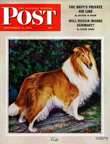 Rutherford Boyd Saturday Evening Post Collie 1943_09_11 | The Saturday Evening Post Graphic Art Covers 1931-1969