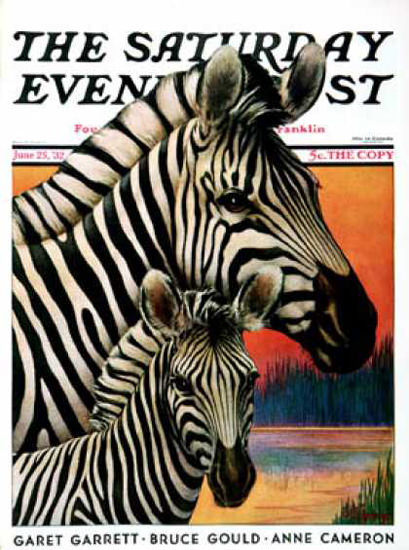Saturday Evening Post Copyright 1932 Zebras Jack Murray | Vintage Ad and Cover Art 1891-1970