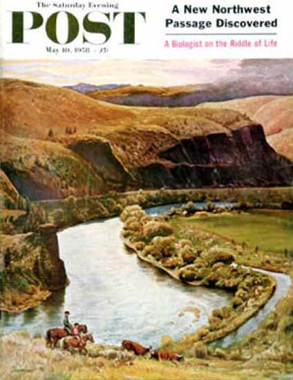 Saturday Evening Post Copyright 1958 Yakima River Cattle   Vintage Ad and Cover Art 1891-1970
