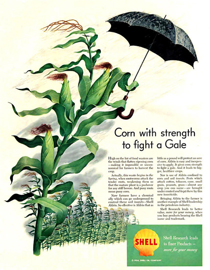 Shell Corn With Strength To Fight A Gale 1952 | Vintage Ad and Cover Art 1891-1970