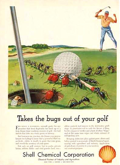 Shell Takes The Bugs Out Of Your Golf 1953 | Vintage Ad and Cover Art 1891-1970