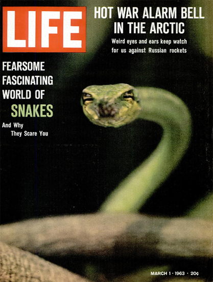 Snakes and why they Scare You 1 Mar 1963 Copyright Life Magazine | Life Magazine Color Photo Covers 1937-1970