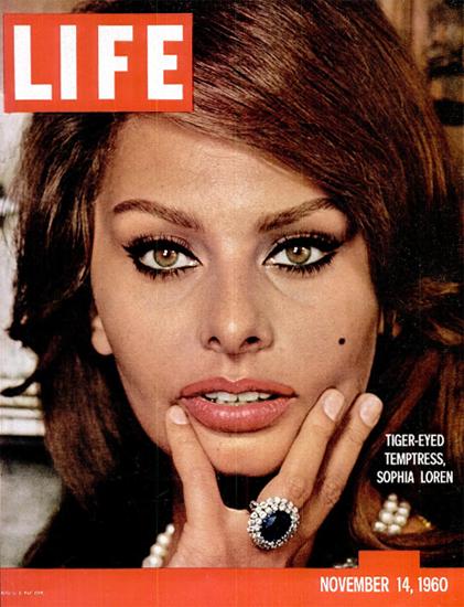Sophia Loren Tiger-Eyed Temptress 14 Nov 1960 Copyright Life Magazine | Life Magazine Color Photo Covers 1937-1970