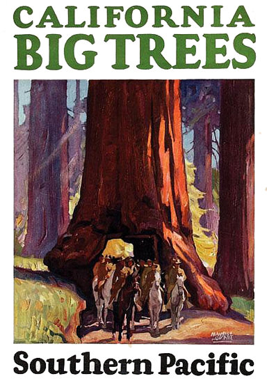 Southern Pacific California Big Trees 1920s | Vintage Travel Posters 1891-1970