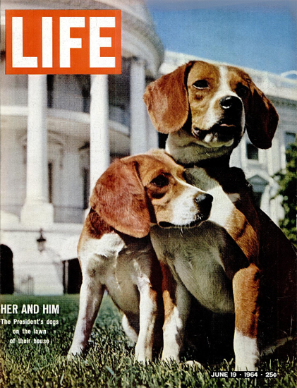 US Presidents Dogs at White House 19 Jun 1964 Copyright Life Magazine | Life Magazine Color Photo Covers 1937-1970