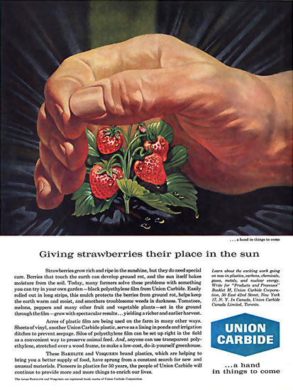 Union Carbide Strawberries | Vintage Ad and Cover Art 1891-1970
