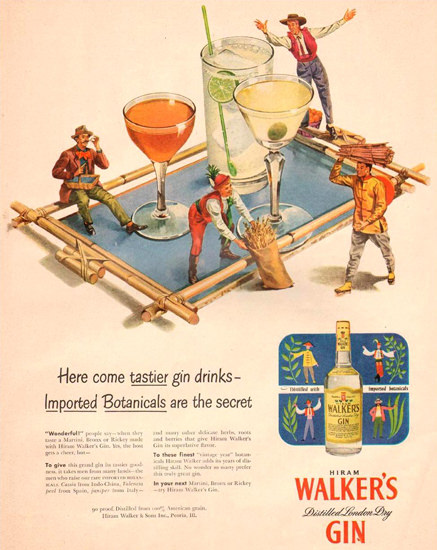 Walkers Gin Imported Botanicals 1951 | Vintage Ad and Cover Art 1891-1970