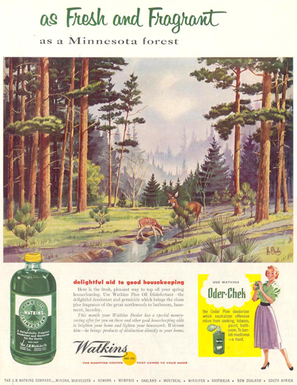 Watkins Pine Oil Disinfectant Forest 1955 | Vintage Ad and Cover Art 1891-1970