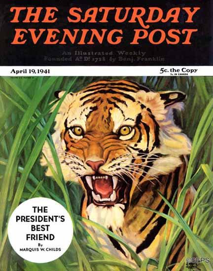Watson Barratt Saturday Evening Post Snarling Tiger 1941_04_19 | The Saturday Evening Post Graphic Art Covers 1931-1969